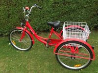 Adult Tricycle Cargo Trike 6 speed Shimano Shift