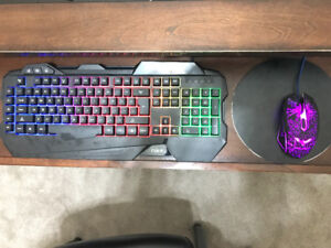 Light-Up Keyboard and Mouse