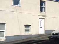 Modern 2 Bed Flat in Keyham!