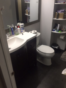 Port Union and Lawrence basement 1 bed apt