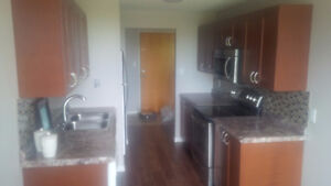 FULLY FURNISHED 1155 sq.ft CONDO FOR RENT 55 BLUE SPRINGS DR