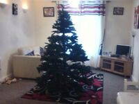 7' Cgristmas Tree and lots of decorations