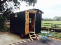 Shepherd's Hut. Extra room for your home.