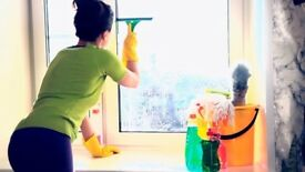 INTERNAL WINDOW CLEANING SERVICE