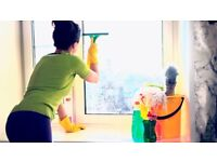 INTERNAL WINDOW CLEANING SERVICE