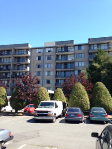 Spacious Westside Richmond 3 bedroom apartment - Available Now
