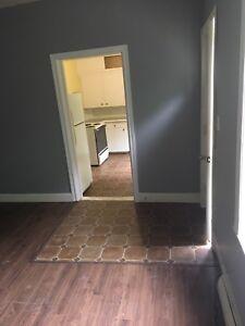 1 bedroom  apt for rent