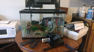 20 Gallon fish tank with rocks and accessories