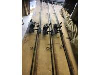 Pike/carp rods