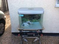 Complete bow fronted aquarium fish tank set up