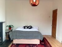 Large Double Room in Family House in Fishponds