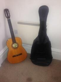 Angelica acoustic guitar