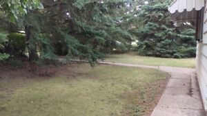 Affordable house in Briercrest.