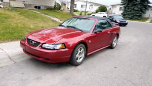 MINTY! 2004 FORD MUSTANG! OBO