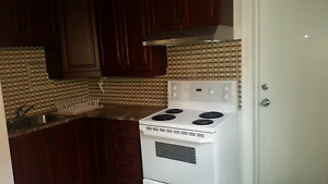 Newly renovated spacious 2 bedroom unit Hull