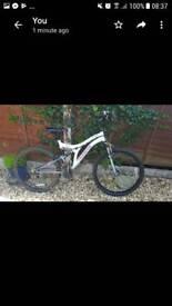 Women's 24 inch muddyfox bike