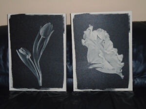 Two Canvas Pictures