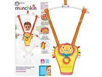 Baby door bouncer/swing