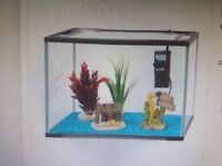19lt Fish Tank + filter to sell £ 23