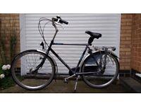 Azor Boundless Modern Dutch Bicycle