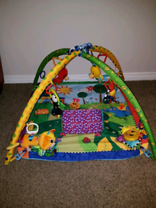 Baby Einstein Play Mat and more!