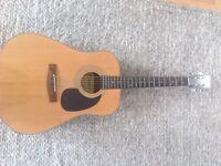 Acoustic Guitar Steel Strings
