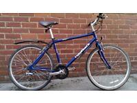 Gents Ridgeback 21 Speed Hybrid Bike in Perfect Order
