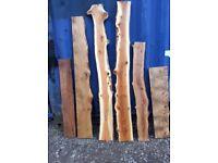 Kiln dried oak elm sycamore turkey oak yew