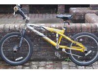 Boys Bike - Magna Rip Curl £10