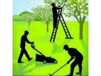 Gardening services garden waste removal gardener