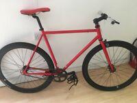Teman Singlespeed bike