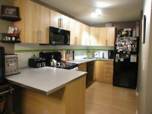 1BR Condo Available for Immediate Possession Close to Downtown