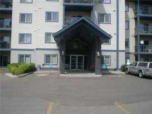 Excellent 770 sq ft fully-furnished 3rd flr Executive apartment