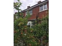 Sunny 3 bed terrace house morpeth £650pcm . My emails accidentally deleted please resend