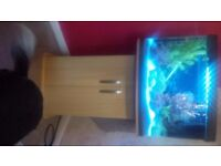 40 ltr fish tank including beech stand heater pump etc