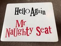 Naughty Seat