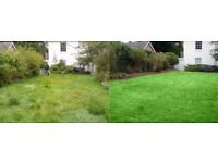Lawn mowing, hedge cutting, garden tidying, grace trimming, backyard clearing, in Bristol and Bath.