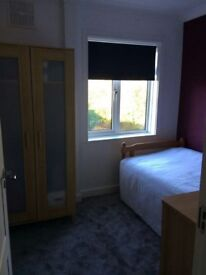 Spacious single room available