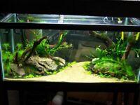3ft Fishtank aquarium Complete with accessories