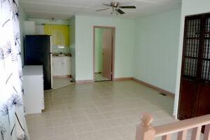 Bachelor/Studio suite, Private entrance, Driveway parking