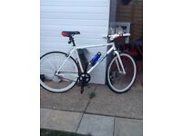 """Men's 28"""" Coyote Fixie Bike single speed new lights new cables new seat cb5 £170 ono"""