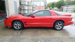 1999 Pontiac Firebird Project