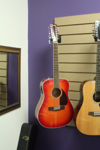 Fender 12 string with hard shell case