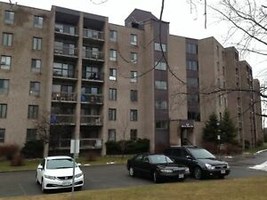 UPDATED 2 BDRM CONDO! 209-358 Queen Mary