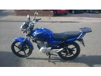 Yamaha YBR 125 59 Plate Excellent Condition Very Low Mileage