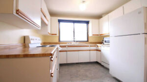 4 bedroom beautiful house near college ,perfect for students