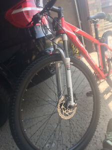 Mountain Bike Opus STOLEN
