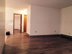 Spacious 2 BDR Apt In South End, All Inclusive