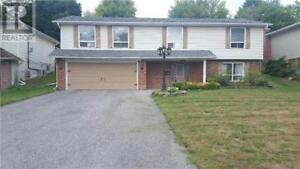 a nice detached banglow in central newmarket rent