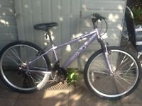 Lovely lady/s bike in good working order £40 can deliver for petrol cost 26 wheel 14 frame 18 gears